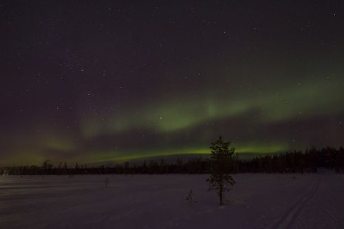 lapland winter aurora