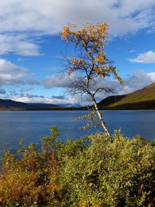 lapland finnish nature