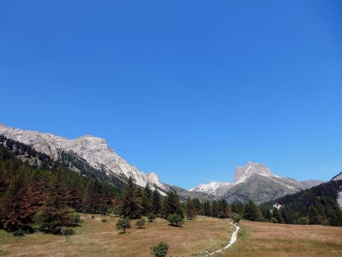 larch mountain alps
