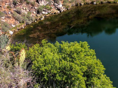 Arizona, rimrock, gerai, montezuma & nbsp, gerai, pavasaris, požeminis & nbsp, pavasaris, vanduo, įgriuva, cenote, duobę, gamta, lauke, kalkakmenis, didelis gerai