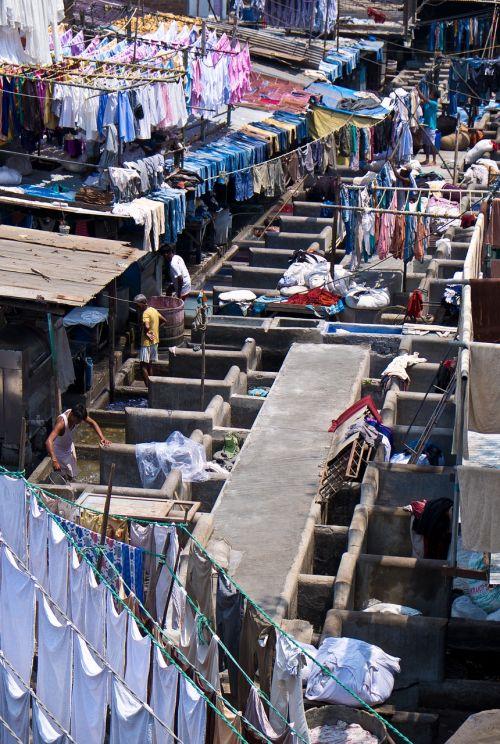 skalbiniai,lūšna,Indija,Mumbajus
