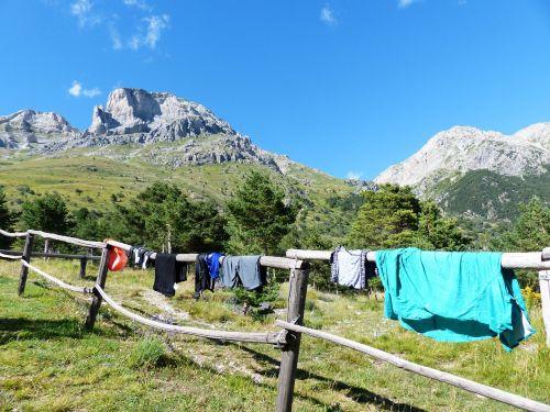 laundry dry clothing