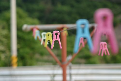 laundry clothes peg summer