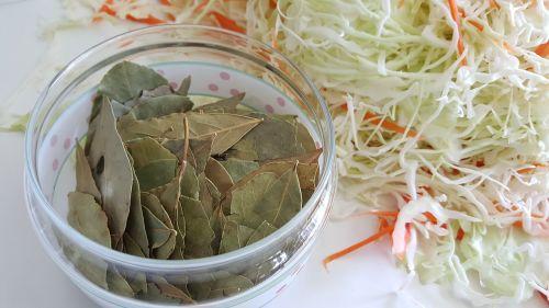 laurel cabbage seasoning