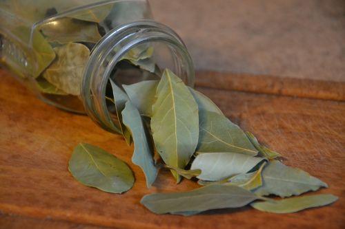 laurel bay leaf spice