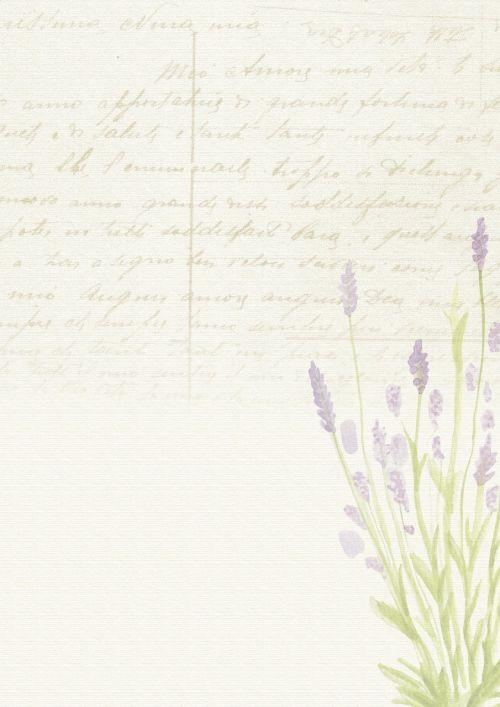 lavender background romantic