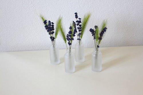 lavender  vase  cereals