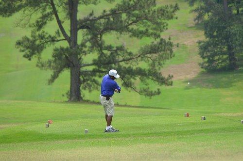 lawn  golf  fairway