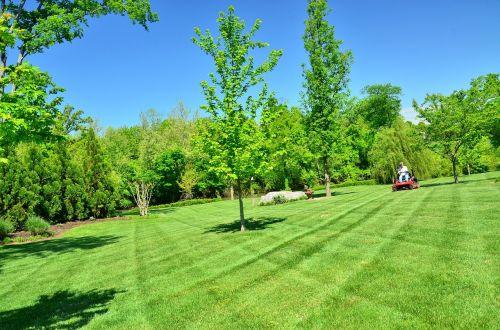 lawn care lawn maintenance lawn services