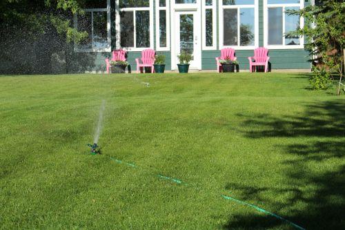 Lawn Pink Chairs Water Sprinkler
