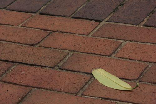leaf brick floor