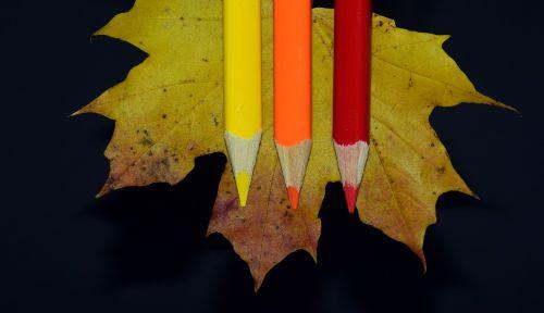 leaf maple leaf pens