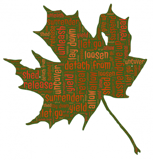 leaf let go autumn