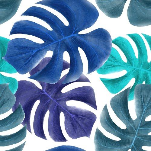 leaves  tropical  blue