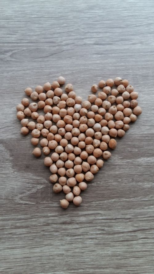legume bless you chickpea