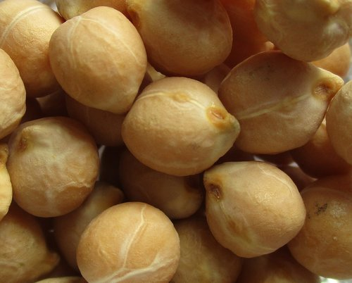 legumes  chickpeas  food