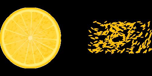 lemon citron citrus