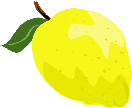 lemon whole yellow