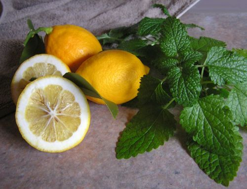 lemon and balm