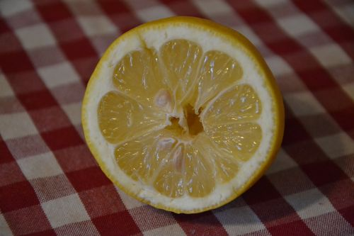 lemon butterfly goes fruit