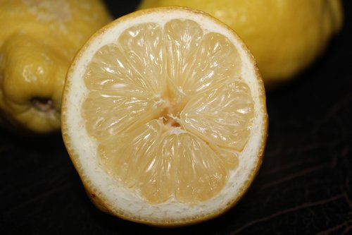 lemon  fruit  citrus fruits
