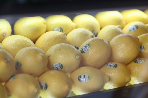 lemon exhibition built-in