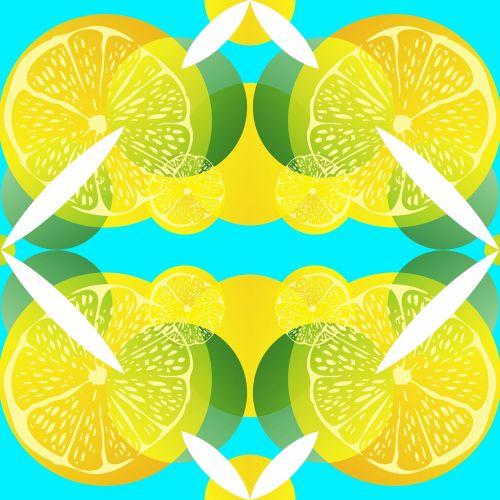 citrina,kalkės,citrusiniai,modelis