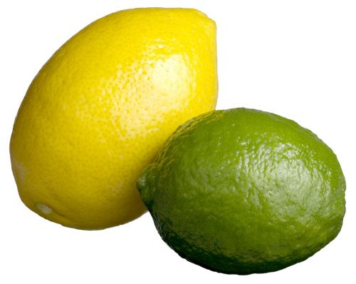 lemon lime lime lemon citrus