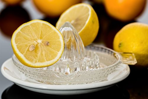 lemon squeezer lemon juice citrus