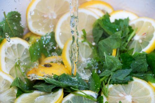 lemons lemon balm green