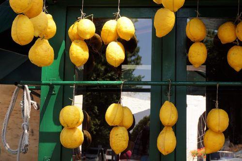 lemons fruits sour