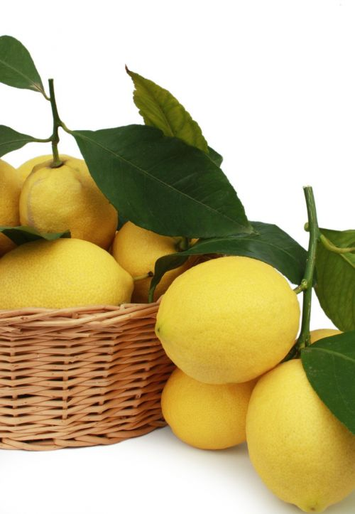 lemons citrus fruits fruit