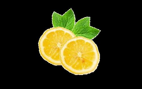 lemons mint lemon