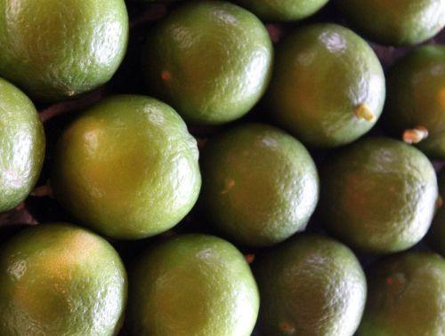 lemons nature green