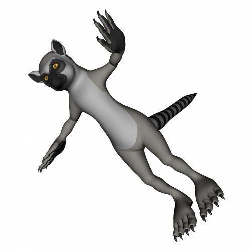 Lemur In 3d