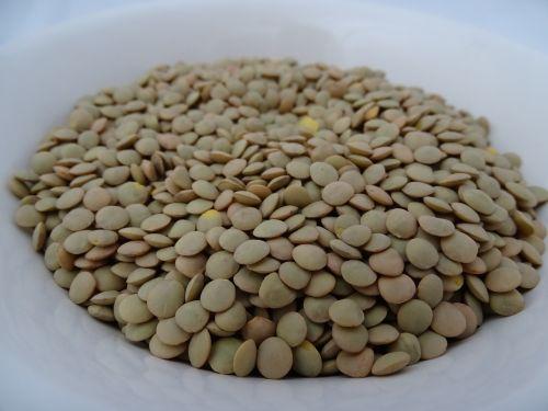 lentils food nutrition