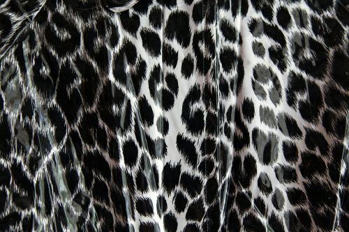 leopard pattern black and white leopard