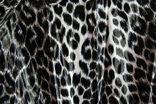 leopard pattern black and white leopard