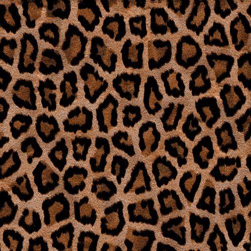 Stylized Leopard (6)