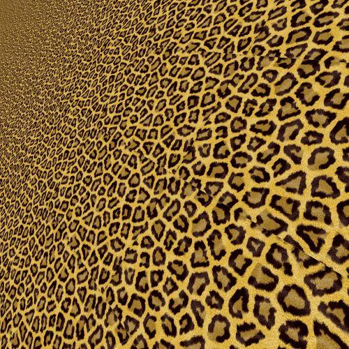 Stylized Leopard (7)