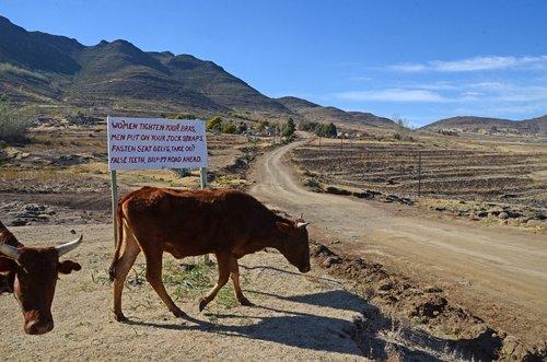lesotho  road  sign