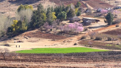 lesotho settlement landscape
