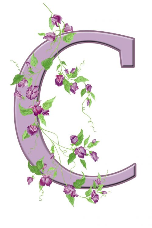 Letter C Floral Initial