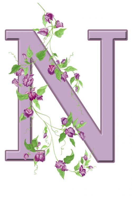 Letter N Floral Initial