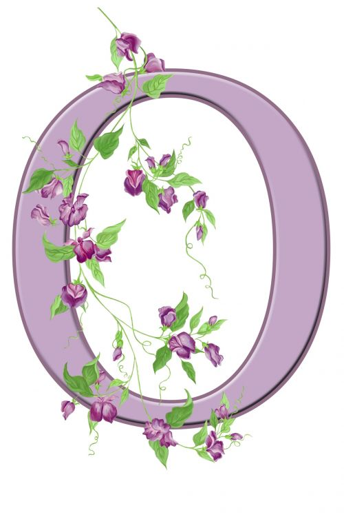 Letter O Floral Initial