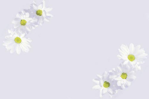 Letter Paper - Flowers