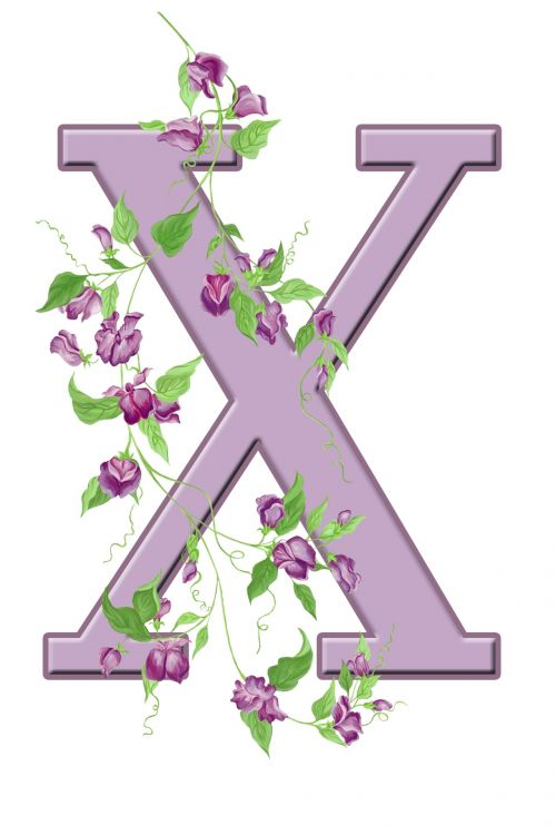 Letter X Floral Initial