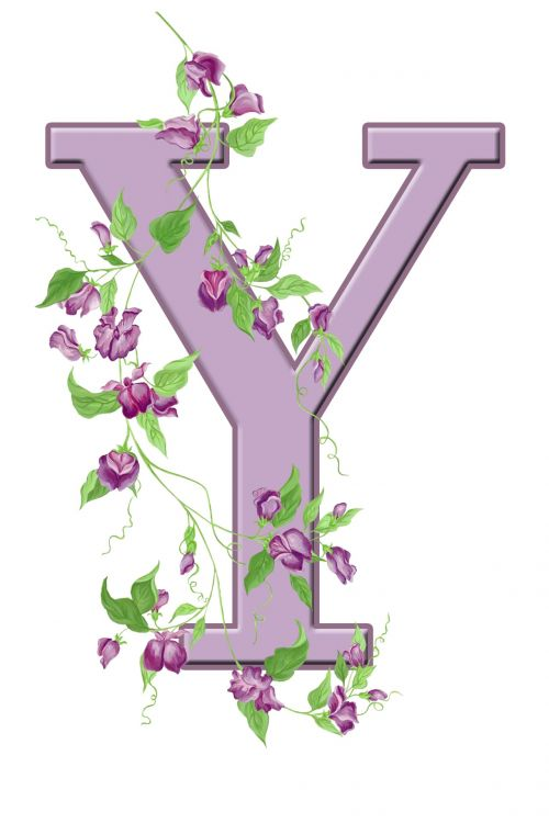 Letter Y Floral Initial