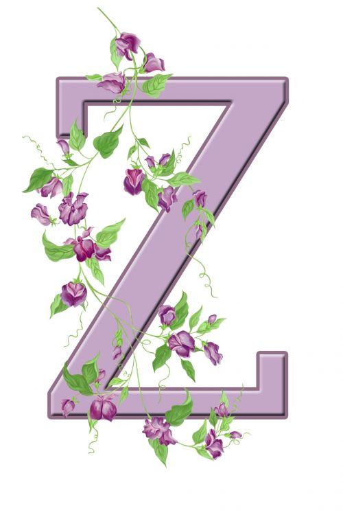 Letter Z Floral Initial