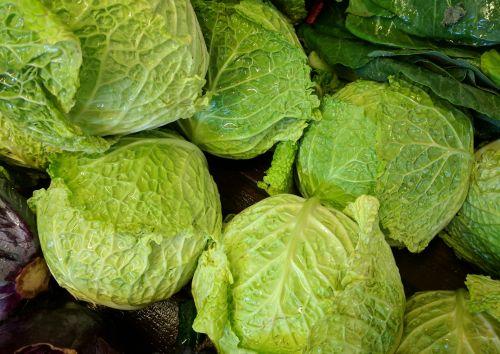 Lettuce Heads